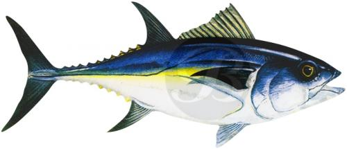 115 Bluefin Tuna